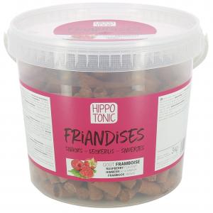 Friandises Hippotonic